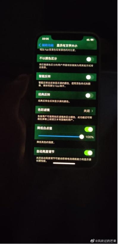 苹果回应iPhone 12屏幕发绿问题 系软件导致